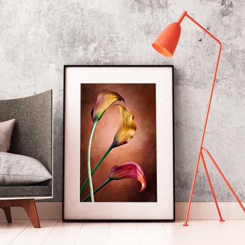 Fine Art Photo Canvas Giclee Printing Framing Finerworks